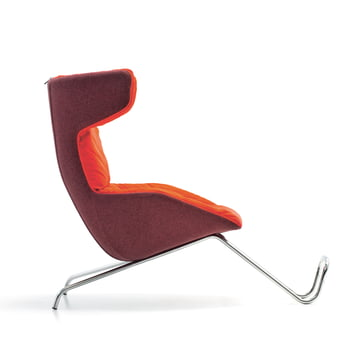 Moroso - take a line for a walk - rot