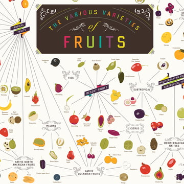 Pop Chart Lab - The Various Varieties of Fruits